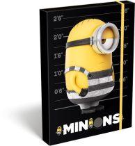 LIZZYCARD füzetbox Minions Stripe - A/4