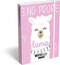 LIZZY CARD Lollipop Drama Lama Pink füzetbox A/5