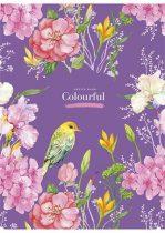 SHKOLYARYK Colourful 80 lapos vonalas A/4-es füzet