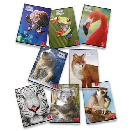 PIGNA Animal négyzethálós füzet - A/4